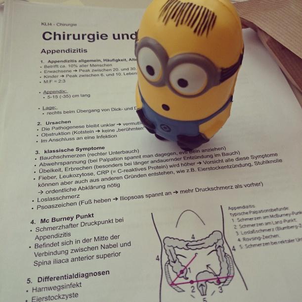 Minion ist genauso verwirrt wie ich. Letzte Woche hieß es lernen für die Prüfung! Bestanden mit Sehr gut *Angebermodus off*
