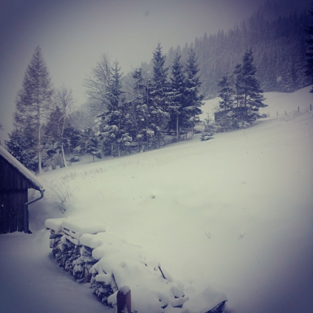 Schnee so weit man blickt!