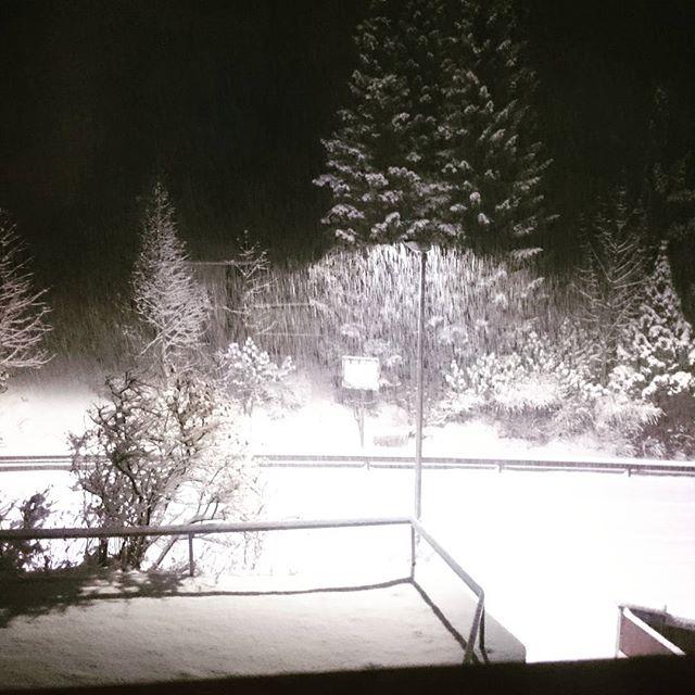 Winter sagt Hallo ⛄❄